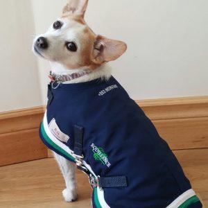 RG Dog Coats